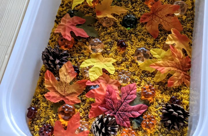 easy fall sensory bin for kids