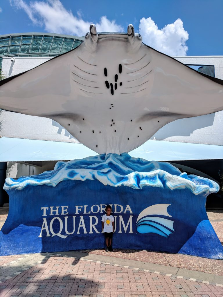 Florida Aquarium in Tampa Bay